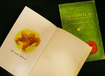 Image of Quidditich and Beasts